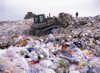 Heiwajima garbage landfill site in Tokyo Bay Tokyo Japan