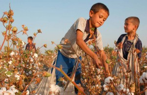 In Uzbekistan, children and adults alike are forced to work in the fields.