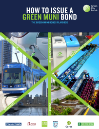 Green Muni Bond report